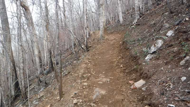 Easy trail