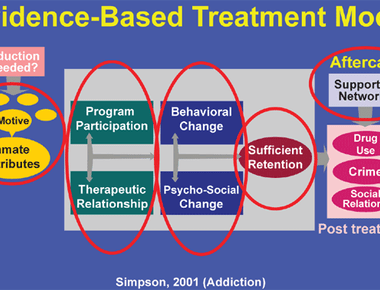 Psychological treatments for Mental Disorder in adults