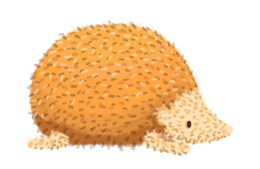 PostHog - Final Hedghehog