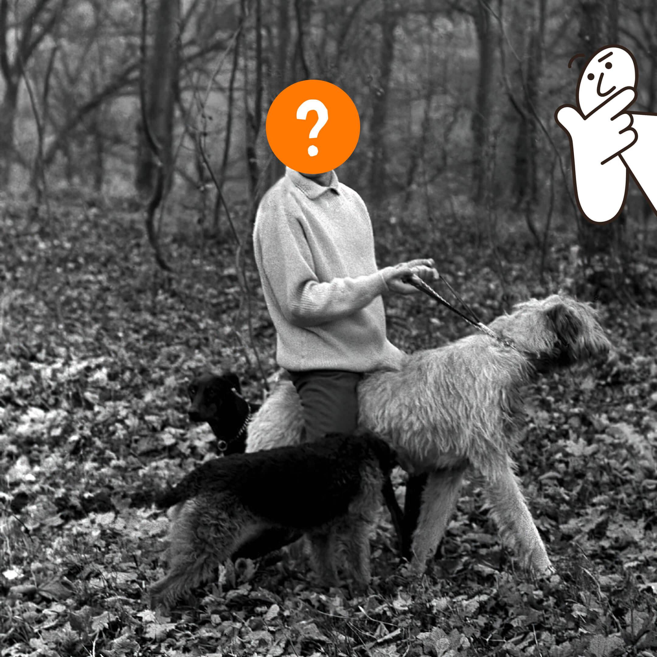 Неизвестный напрогулке ссобаками. Иллюстрация Bookmate Journal
