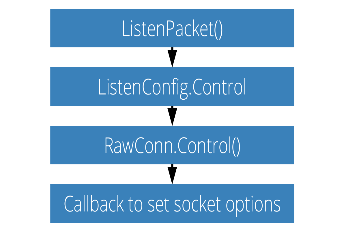 Passing Socket Options in Go