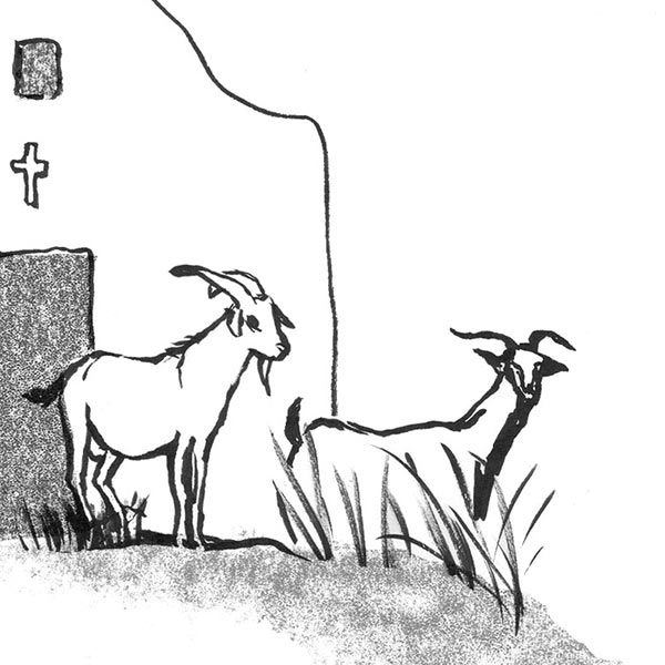 Goats, Greek Stories