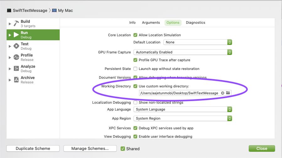 Setting custom working directory