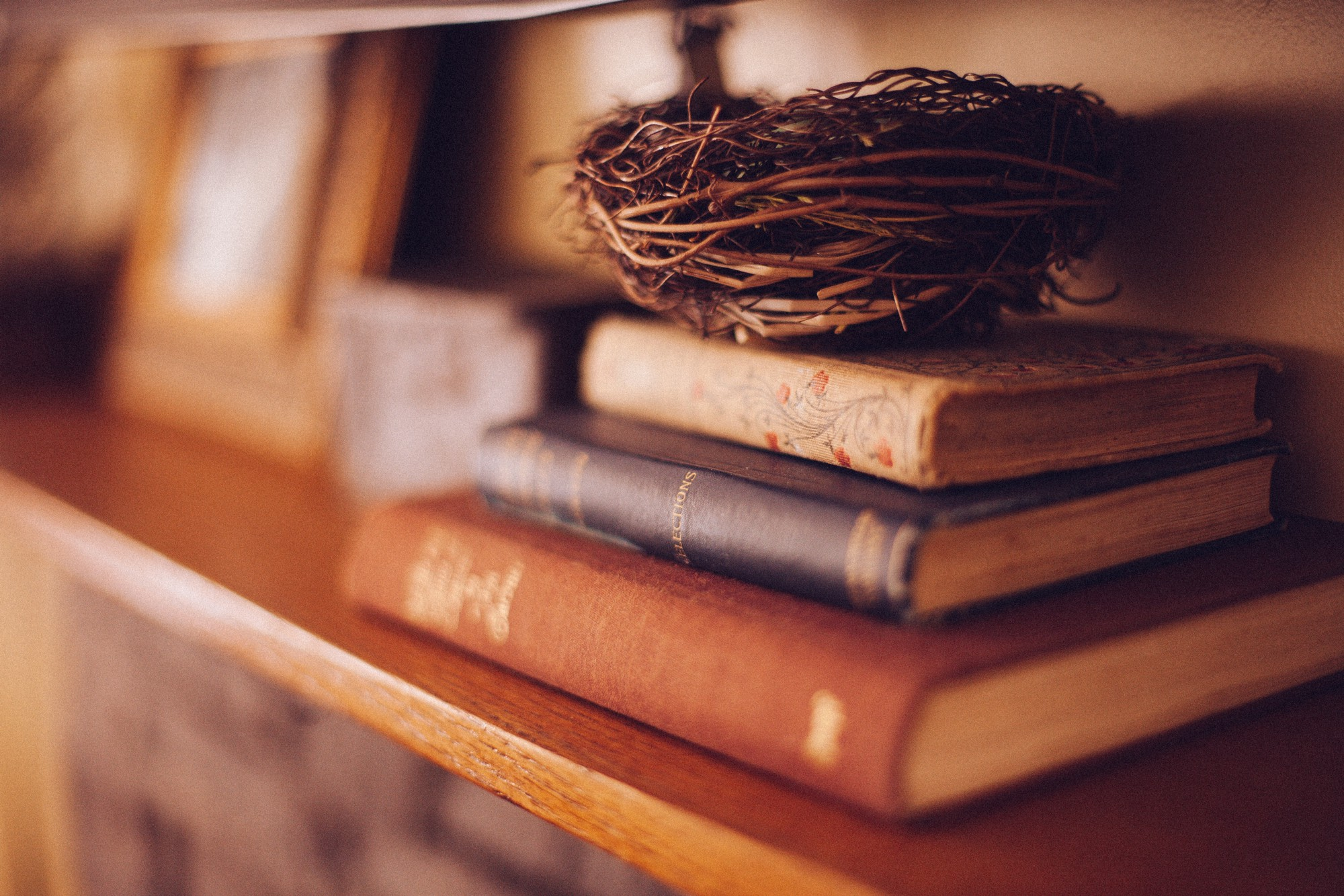 image of a nest on top of a stack of books
