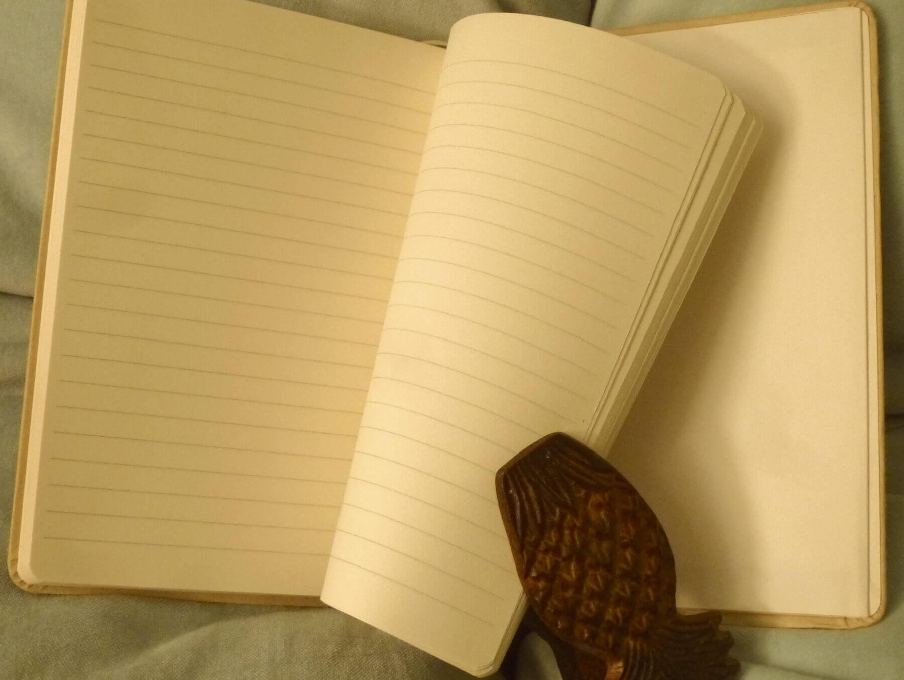 Chameleon Like medium notebook