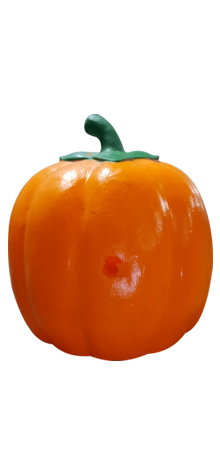 Sweetheart Pumpkin photo