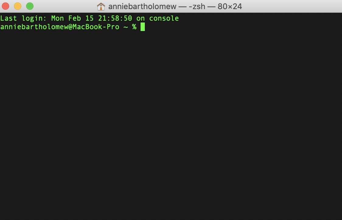 Screenshot of a Mac terminal