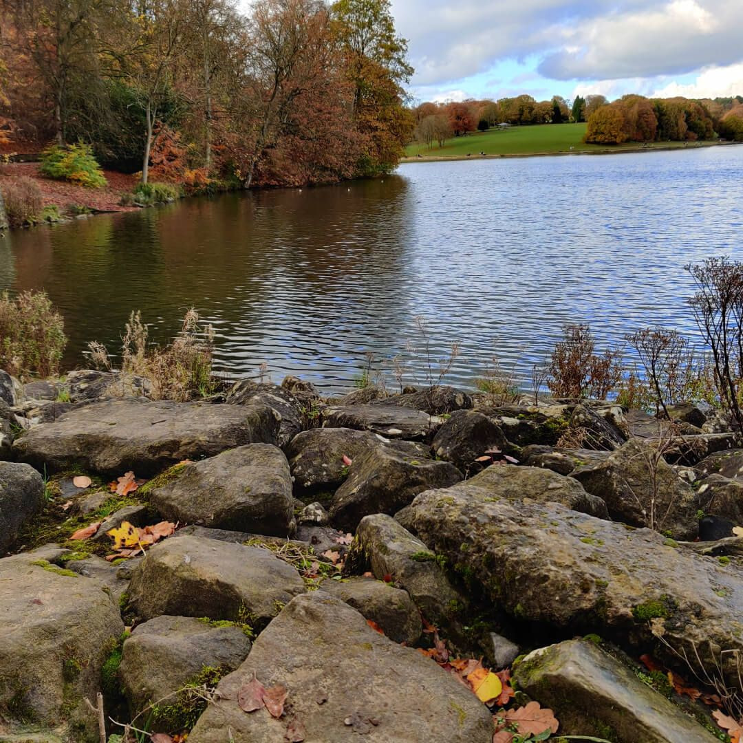 Stones at Roundhay Park