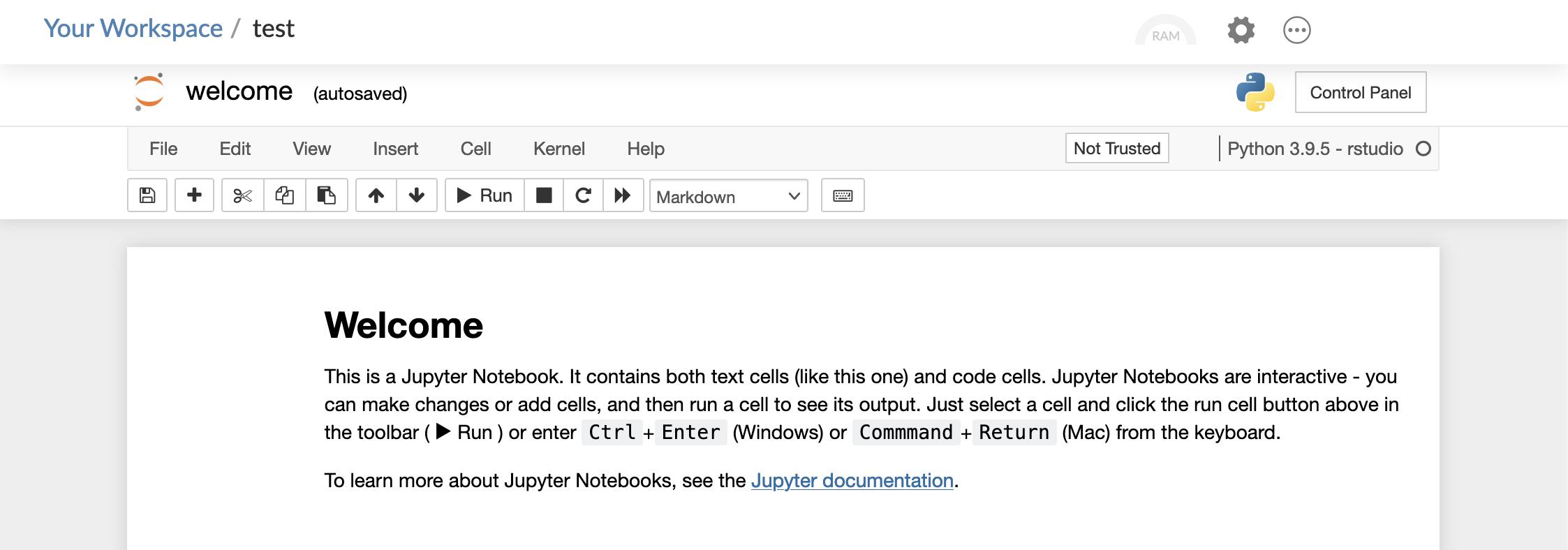 Screenshot of Jupyter notebook in RStudio cloud