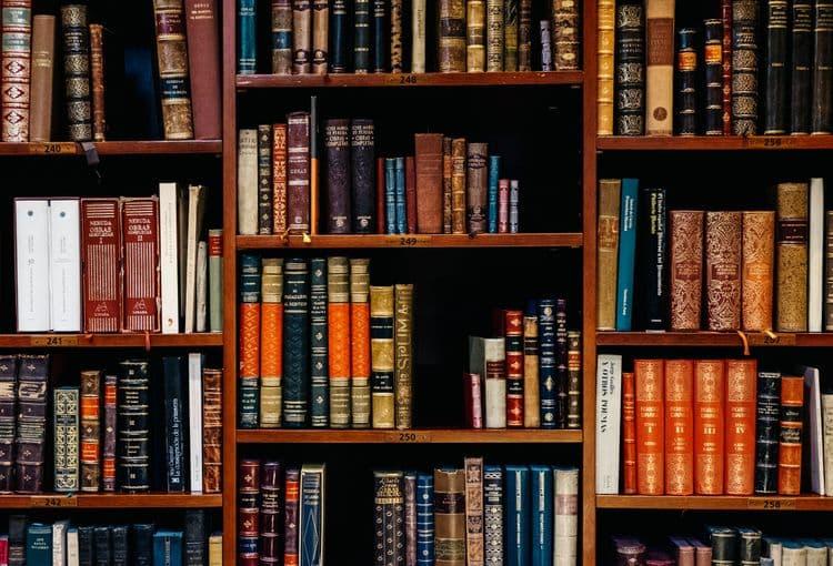 Bücherregal mit vielen Büchern