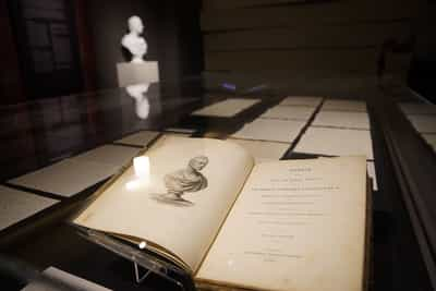 In the foreground, there is a memoir opened up to an illustrated bust of Raffles. Behind the memoir, many handwritten letters are laid out. In the background, an actual bust of Raffles can be seen.