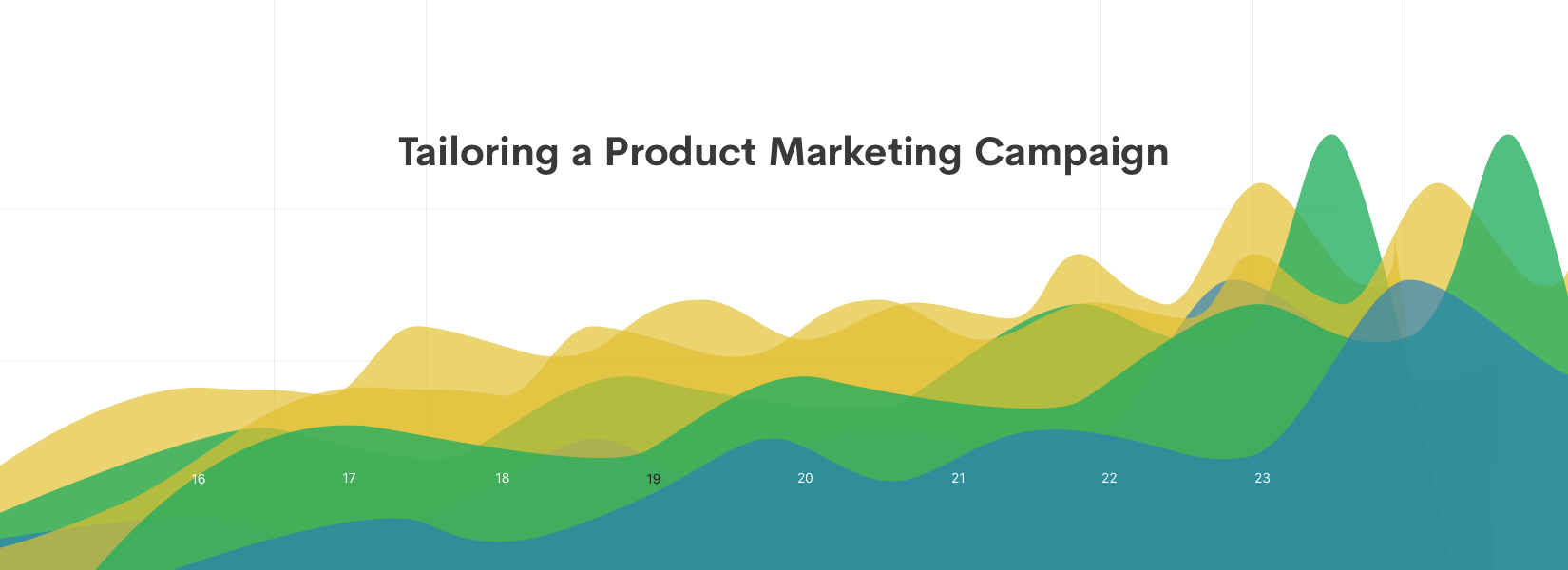Tailoring a Product Marketing Campaign