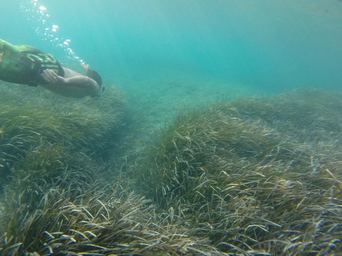 Snorkeling in Greece