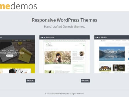 View Website Examples