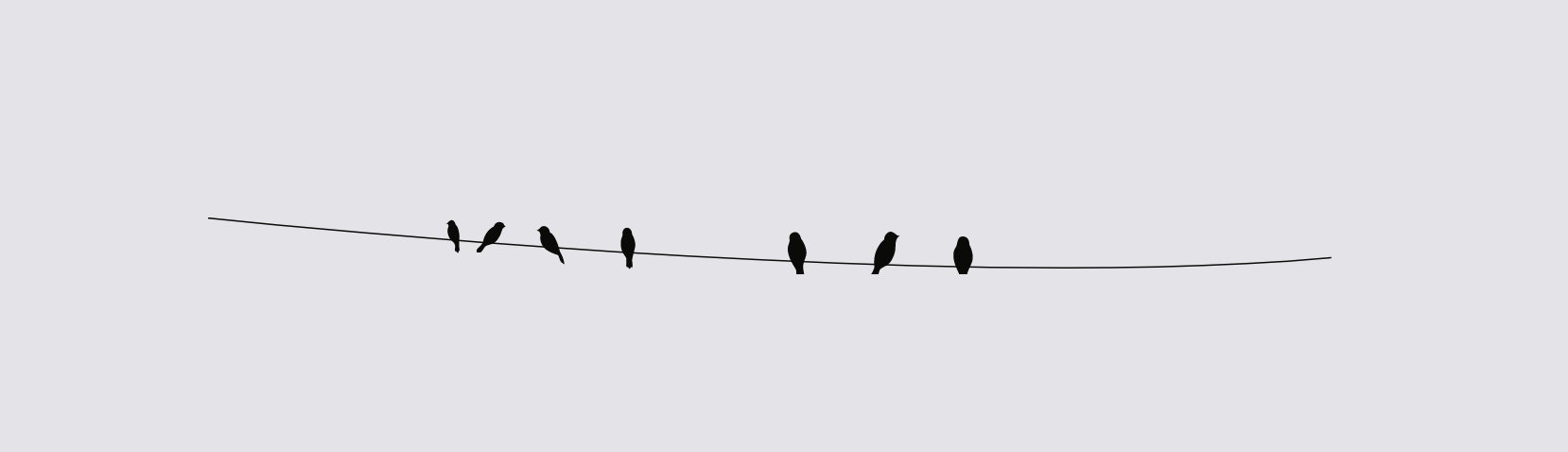 The horizontal rule style I am using on my Web site. It is a vector illustration of a few bird silhouettes standing on a curvey horizontal black wire.