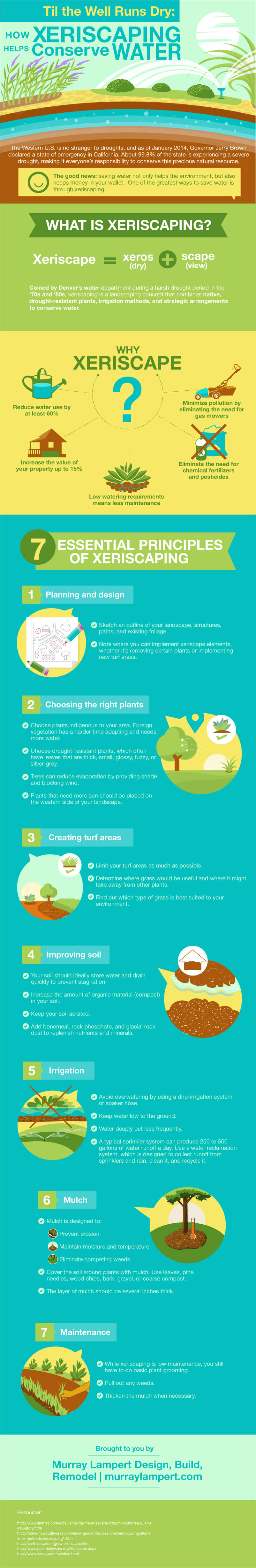 Xeriscaping Water Conservation Infographic