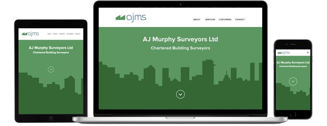 AJMS screenshots