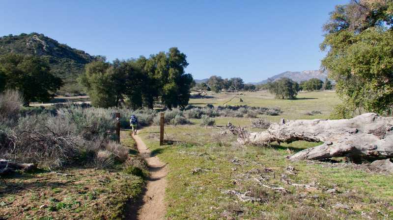 Flat, open trail