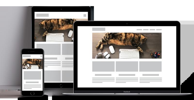 Plurimedia Sviluppo di Web App e realizzazione di Siti Web