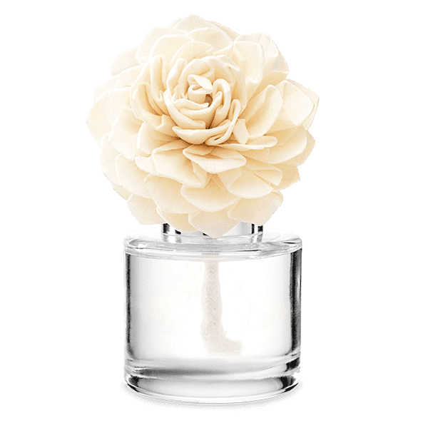 Vanilla Bean Buttercream – Dahlia Darling Fragrance Flower