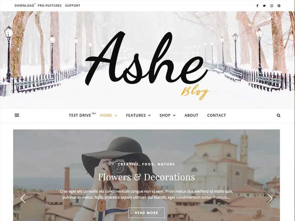 wordpress theme  0010 ashe