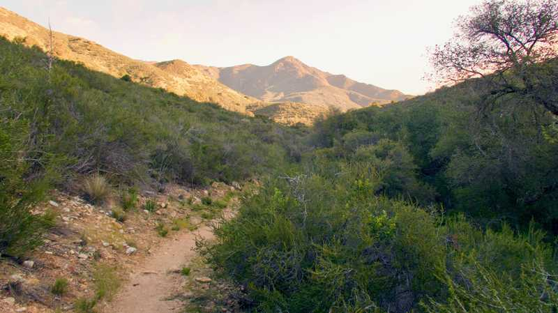 Leaving Agua Caliente Creek