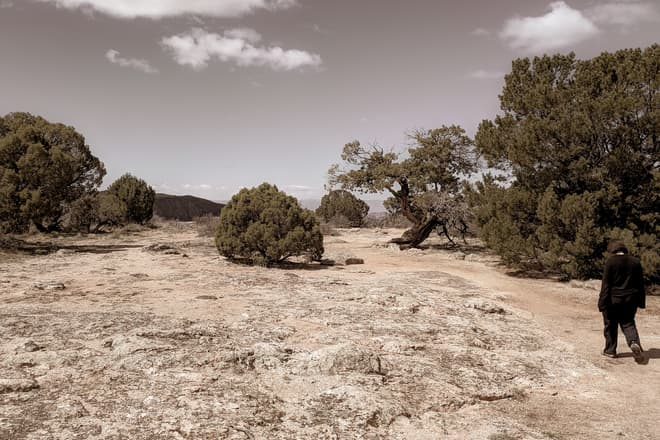 A short, globe-like juniper tree stands alone in the middle of a rocky clearing. On the right side of the frame, Len walks towards it.