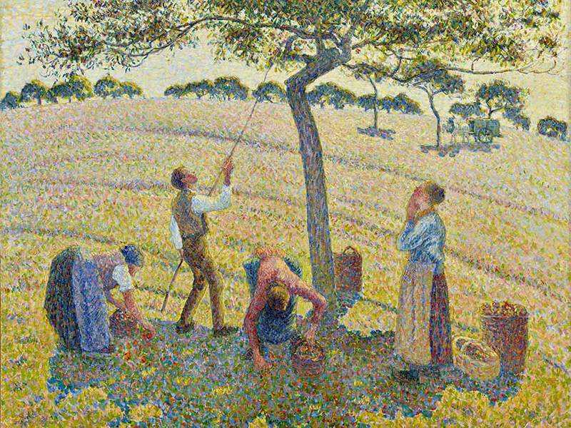 Pissarro's Apple Harvest