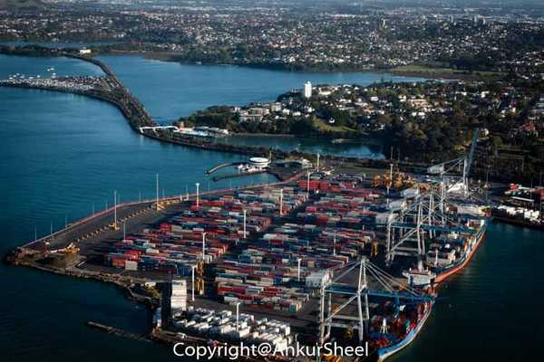 Auckland_Seaplanes-14