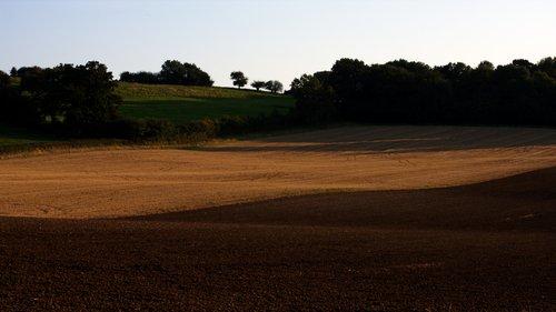 Field 1301