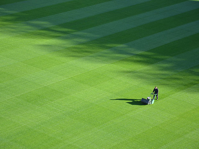 Mowing a large lawn with a beer