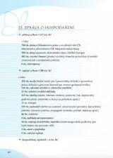 Výroční zpráva za rok 2007