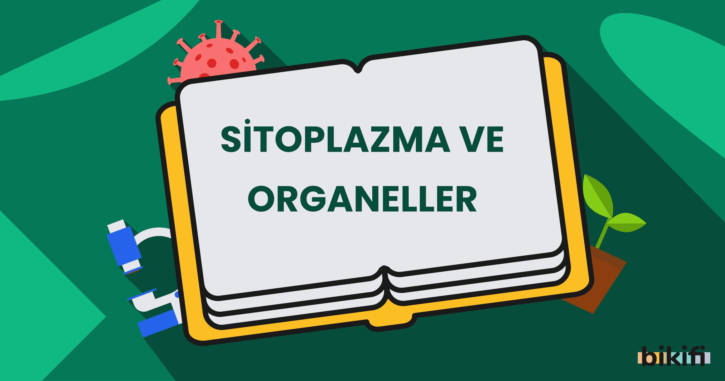 Sitoplazma ve Organeller