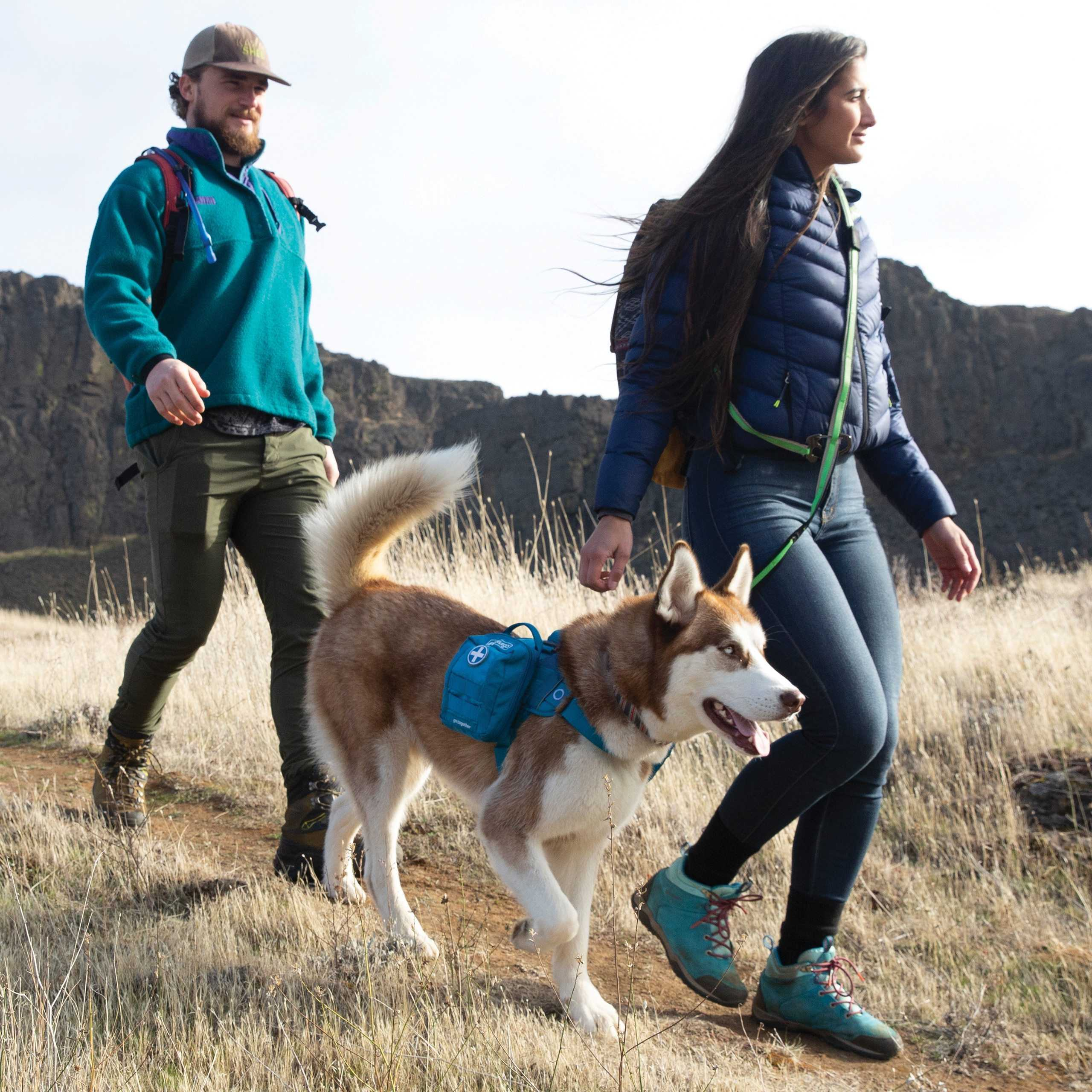 Hiking with Your Dog: State by State Guides