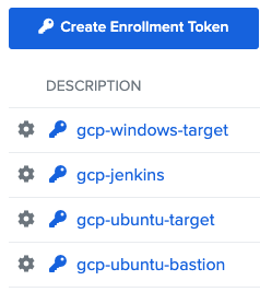 create enrollment token