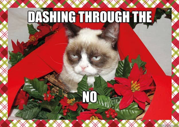 Grumpy Cat Dashing through the... NO