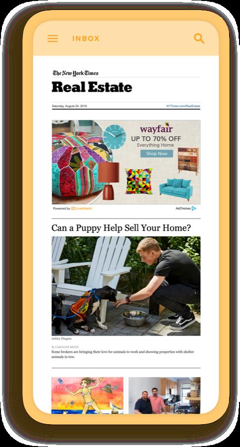 Homepage Mock Inbox