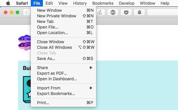 Safari Export PDF