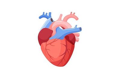 Cum să prevenim apariția bolilor coronariene? - Centrele ARES | Lider in Cardiologie
