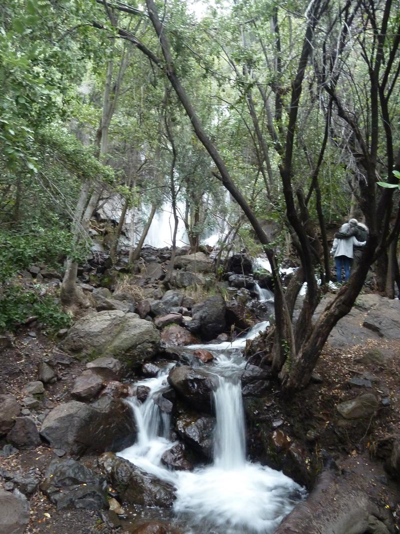 Hiking in Reserva Nacional Rio de los Cipreses