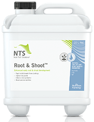 root & shoot