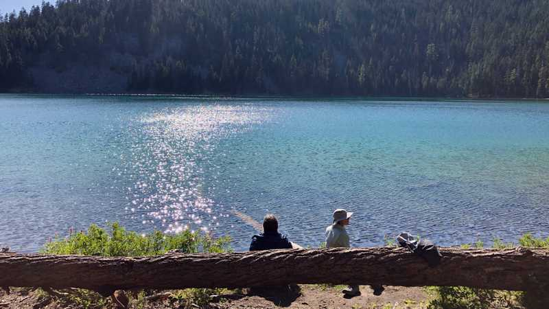 Bluejay and Sunkist sit near the lake