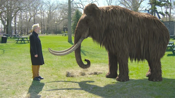 Reviving the woolly mammoth