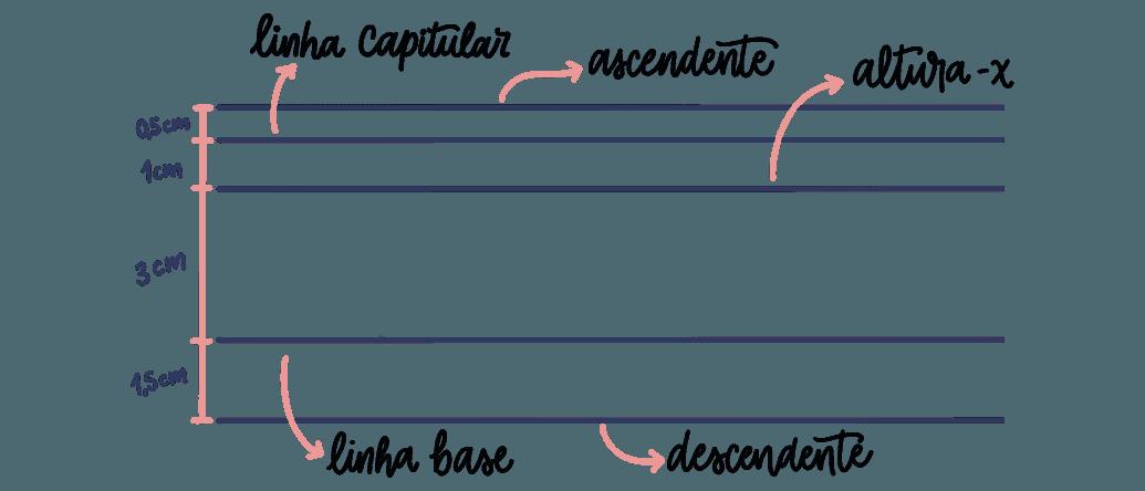 Medidas das linhas guias