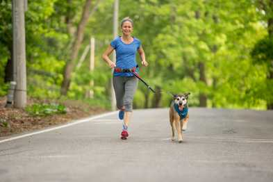 Running with Your Dog - Tips & a Training Plan