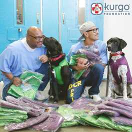 The Kurgo Foundation: Supporting Dogs and Humans by Giving Back