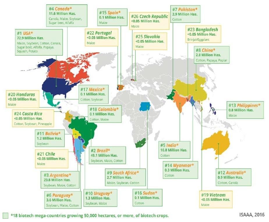 2. ábra: A biotechnológiai haszonnövényeket termesztő országok a Földön 2016-ban (CLIVE, J. 2016).