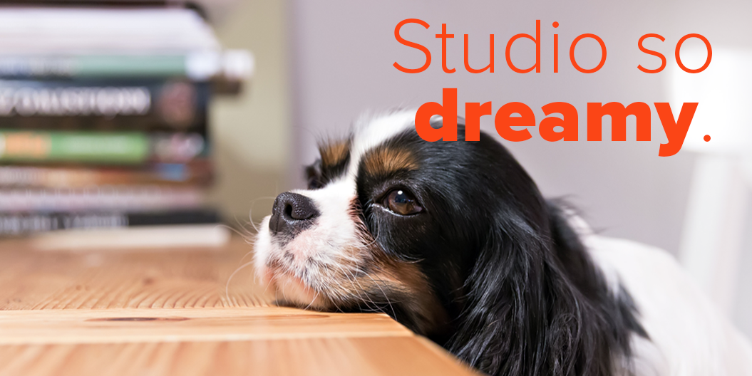 Introducing Stardog Studio