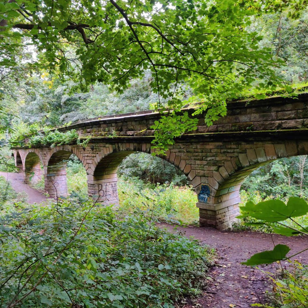 Seven Arches Scotland Wood