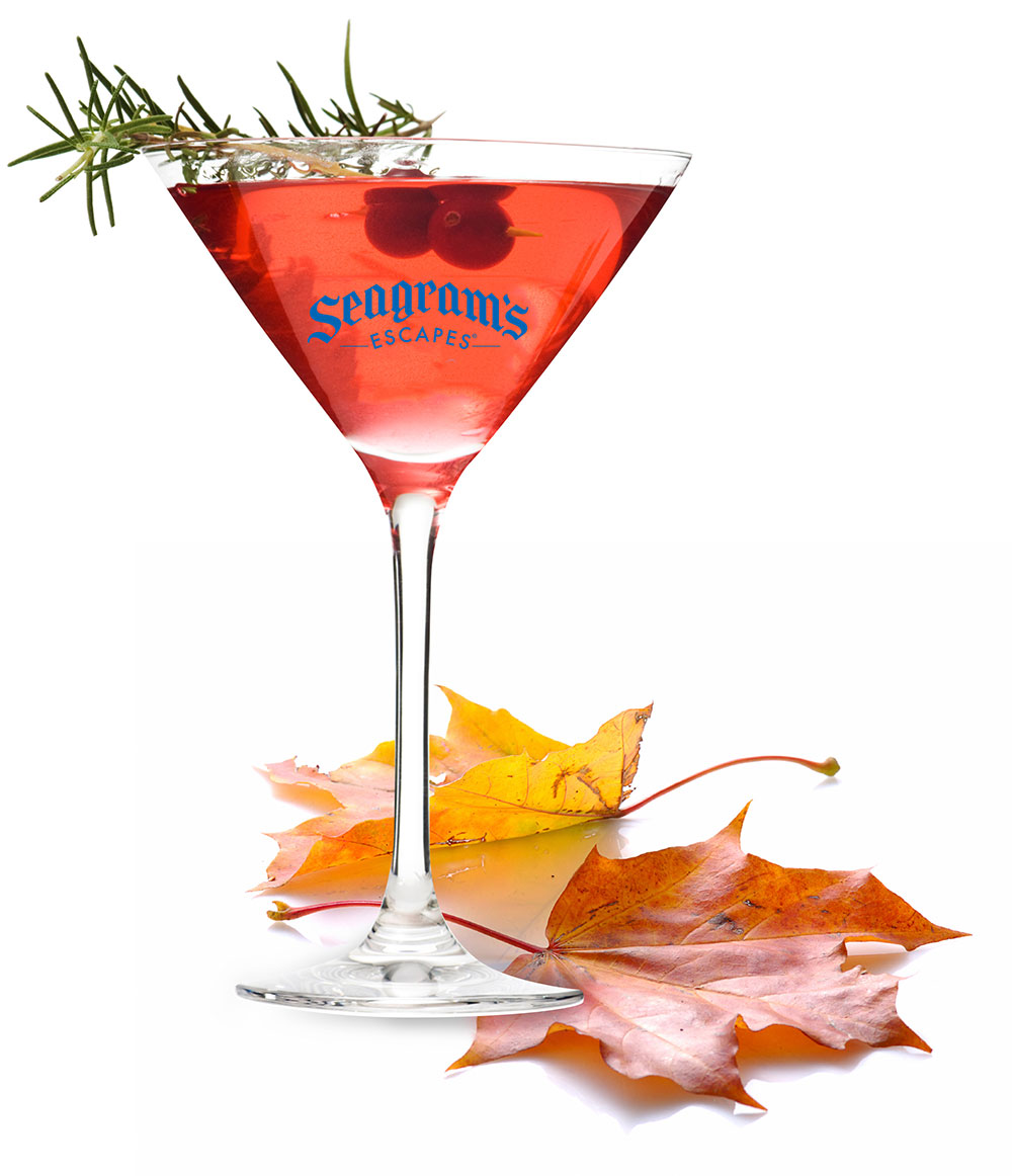 Chilly Cranberry Margarita Image